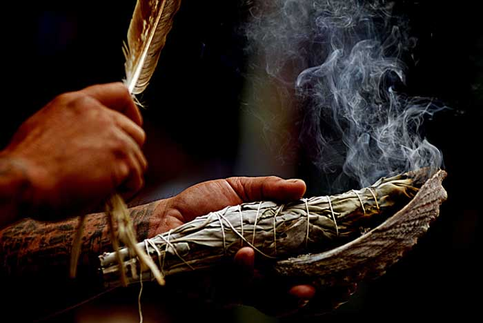 shaman_fire_feather
